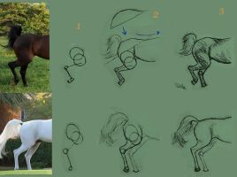 Horse legs: tutorial by Art-Diversity