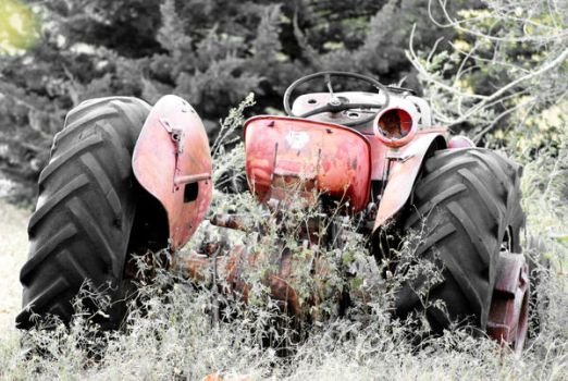 Old Timer by Tswieberg