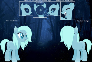 Eternal Frost's Official Reference Sheet by FrozenStrike