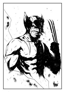 Wolverinecomissions by maanhouse