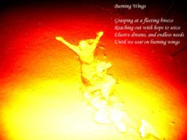 Burning Wings Poem by leahwest4