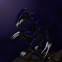 Black Hunter, EarlyMid 2000s by gaminglord