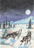 Wolves howling at the moon by peca06