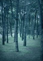 Manipulated: Blue Forest by DebauchedSeductress