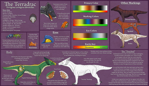 The Terradrac: Ref Sheet by Naeomi