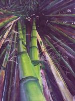Bamboo Forest by LoopyLoonyLou