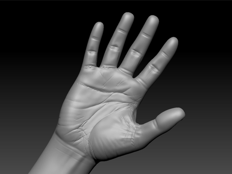 Hand Topology [WIP] by Dalus