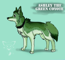 Ashley the green coyote by timmy-gost