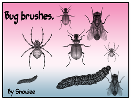 Bug brushes by Snowiee