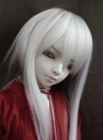 Doll Fam: Yo Myo Han by hisuida