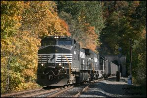 Norfolk Southern Wayne Tunnel by DragonWolfACe