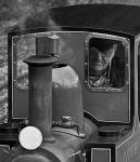 The Traindriver by Xs9nake
