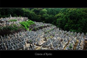 Graves of Kyoto by fotocraft