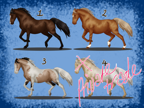 Point Adoptables batch #1 by HelloHorseLovers