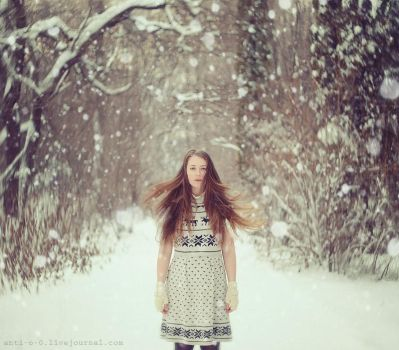 Winter Wonderland by AnitaAnti