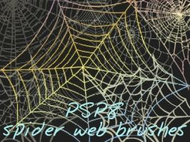 Spider Web Brushes by Mella68