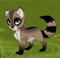 Racoonkit by Paintpaw