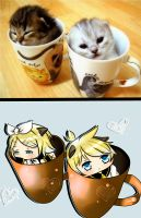 Cats in a Mug: Kagamine Twins ver. by raisuke143