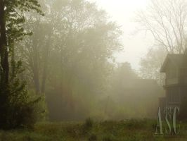 Misty Morning by Pentacle5