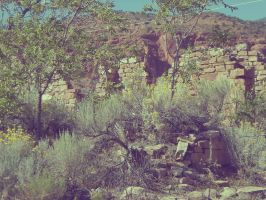 Silver Reef Ghost Town by morbidromantic
