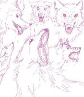 Sketch - Canine faces by Nekyua