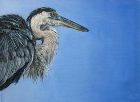 Poised - painting of a heron by Katie-Z