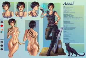 Commission45-Assai character sheet by LadyDeddelit