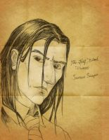 The Half-Blood Prince by Haddrian