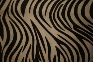 Zebra Pattern 1 by terrestri-stockz