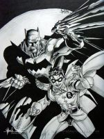 The Dynamic Duo by renen02