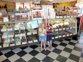 Kids in a Candy Store by redtailhawker