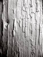 White Cracks 3 by DegraHuma-Stock