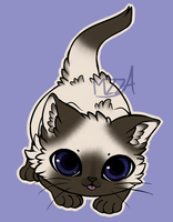Siamese kitten adoptable [OPEN] by mzza-art