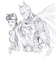 Batman and Catwoman by roxcola