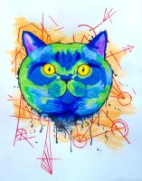 Abstract British Shorthair by lemon-stockings