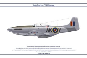 Mustang GB 213 Sqn 1 by WS-Clave