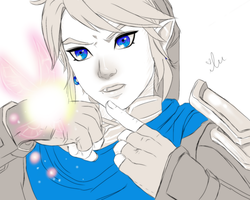 Hyrule Warriors - Link + Proxi by iluvmpiche
