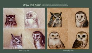 Draw This Again: Owls by TumblingTortoises