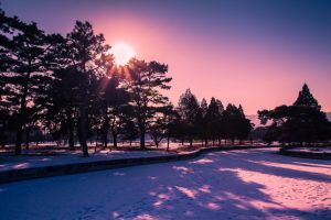 Snow scenery of the warmth of the sun by sunny2011bj