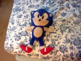 10 inch Sonic Plushie by spaceman022