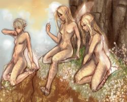 Morning Faeries by AstuteObservations