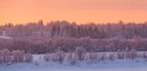 Winter Sunrise by DeingeL