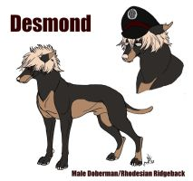 Desmond Ref by Doctor-Axel
