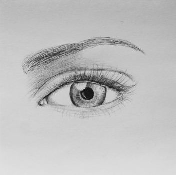 Drawing of an Eye - Ball Point Pen by christina-0o