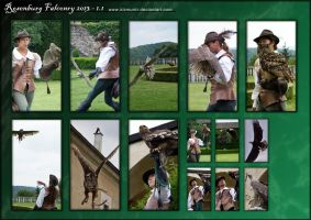 Rosenburgfalconry13-1.1 by kismuntr