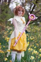 CardCaptor Sakura: Dreaming Cosplay by GoldenMochi