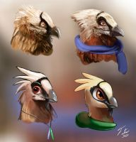 Bearded Vulture Styling by Tsitra360