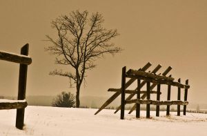 winter_2 by adrian-mladin