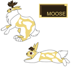 Moose by Dragonheart101