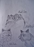 Mudclaw, Webfoot and Nightcloud by Marshcold